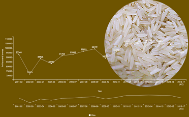 Production of Rice from 2001-02 to 2016-17
